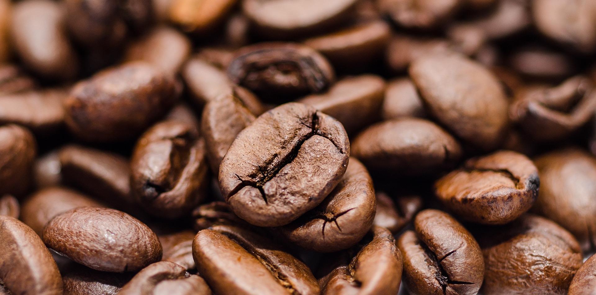 chicco di caffè arabica