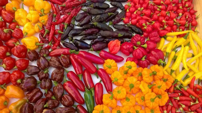 Peperoncini colorati